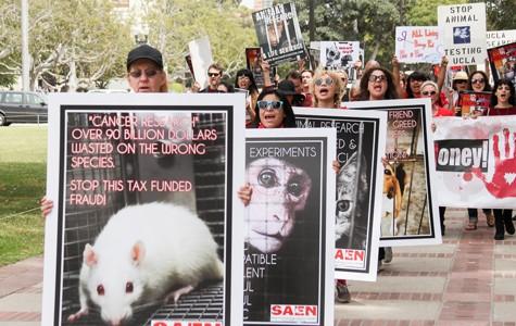 Animal Vivisection Is Cruel and Inhumane