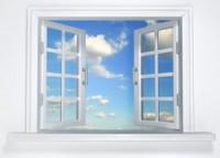 WindowofOpportunity-300x217