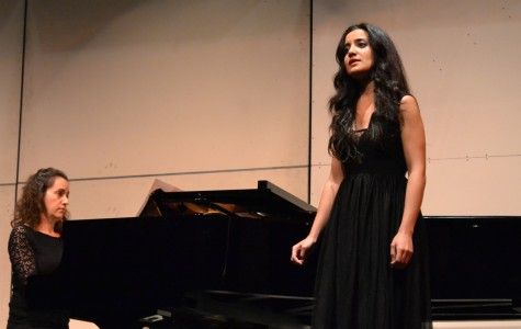 Classical Music Performers Enchant Audience