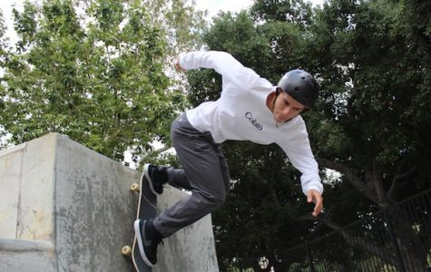 Shredding to Success: Skaters Rise and Ride