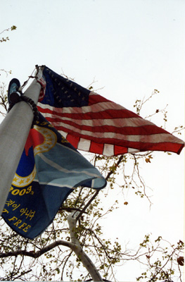 The American Flag at City Hall.