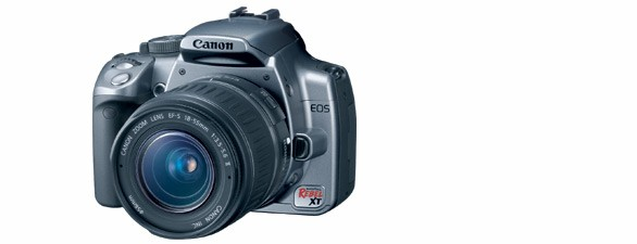 Canon's Digital Rebel XT is a versatile camera that will suit amateurs looking to take really good photos but may not provide the power needed for full professionals.