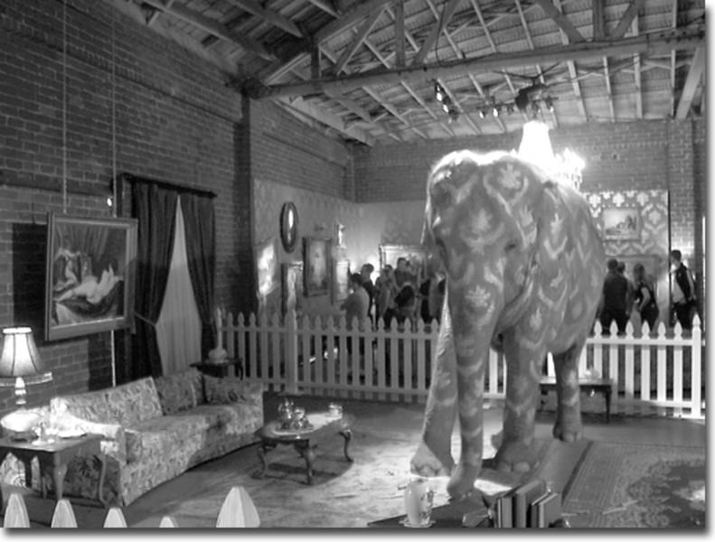 Tai, the elephant, sporting a custom wardrobe in a suburban living room.