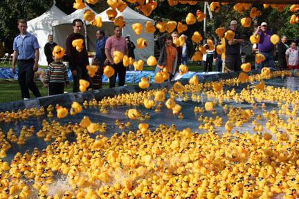 Glendale Club holds its annual Kiwanis Incredible Duck Splash fundraiser