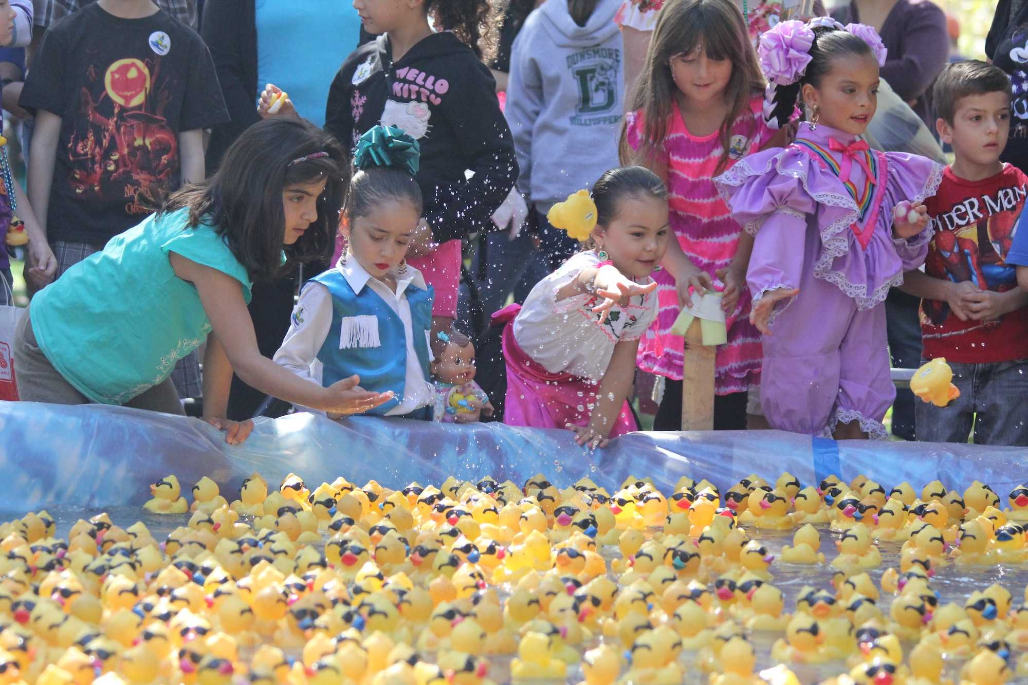 Kids help gather the rubber ducks after the race on Saturday.