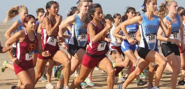 Cross+Country+Teams+Prepare+for+State+Finals