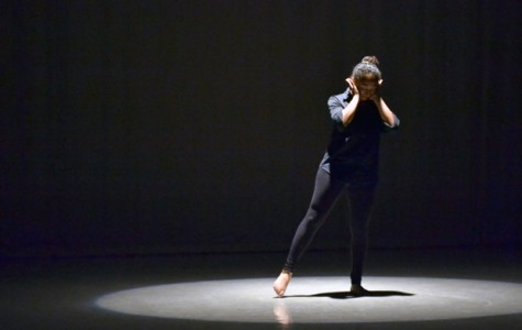 "The dance Phanatix performance on Saturday included Dominique Johnson presenting the composition, ""Human."""