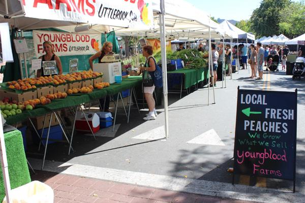 Creativity Connects a Community at Montrose Farmers Market