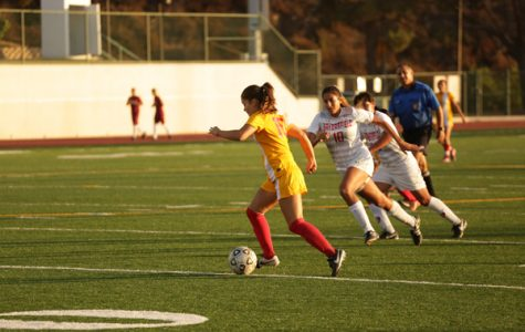 Women's Soccer Loses at Home