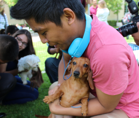 Louis Daza, a computer science major at GCC, gets his chance to pet a puppy.