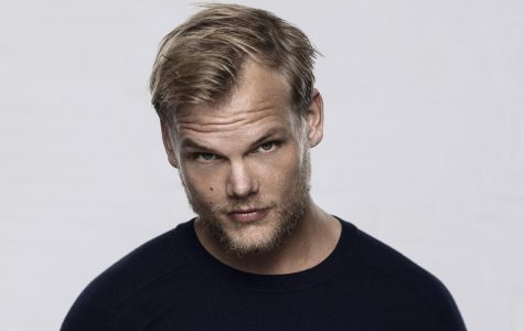 Super Star Avicii May Have Committed Suicide
