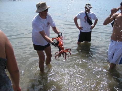 Dr. Javier Gago holding a squid in Mexico during the GCC Baja California Field Studies Program.